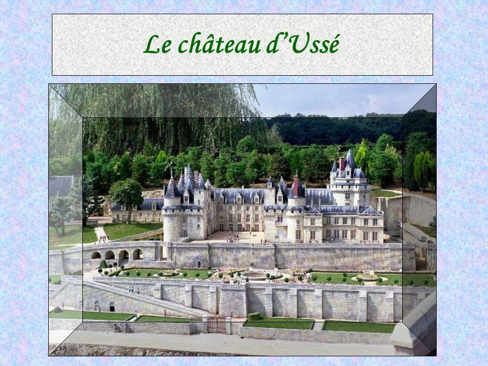 Le château de Villandry est célèbre pour ses jardins « à la Francaise » eblouissants de splendeur, et tellement immenses que l'on peut parcourir ses a