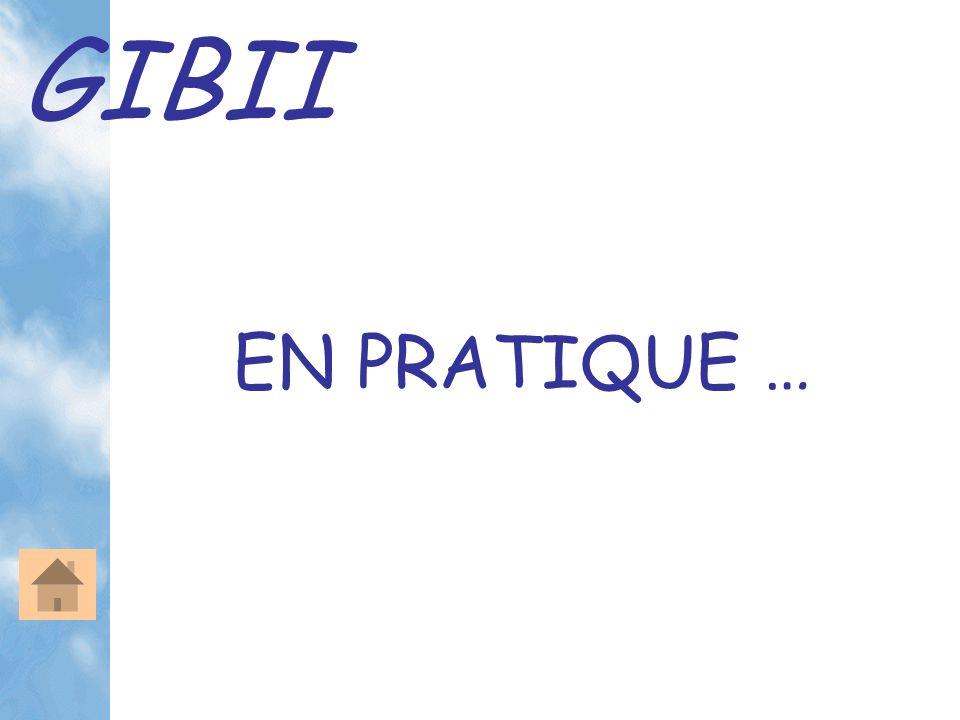 GIBII L'interface professeur La validation des items Parce que … On clique … … et pour une validation ou une invalidation, on peut envoyer un message de justification.