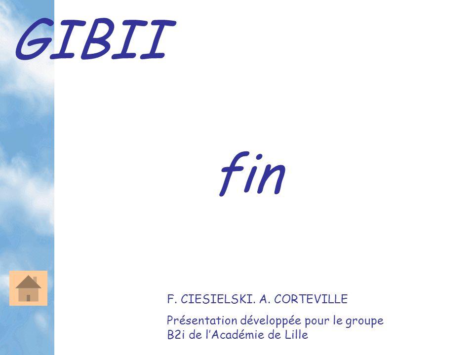 GIBII fin F. CIESIELSKI. A. CORTEVILLE Présentation développée pour le groupe B2i de l'Académie de Lille