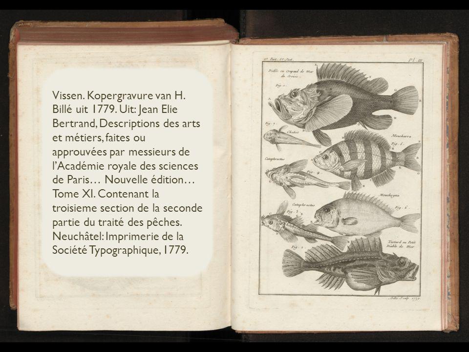Vissen. Kopergravure van H. Billé uit 1779.