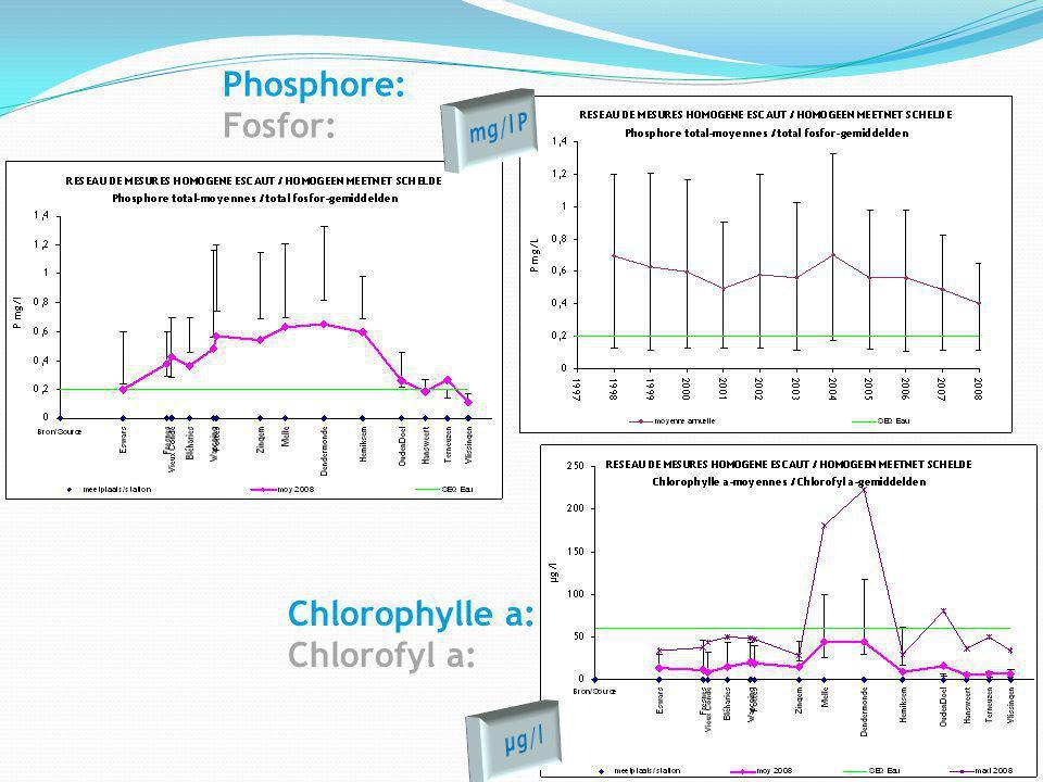 Chlorophylle a: Chlorofyl a: Phosphore: Fosfor: