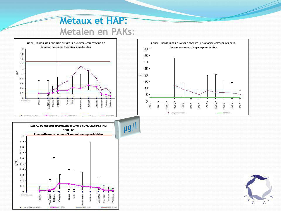Métaux et HAP: Metalen en PAKs: