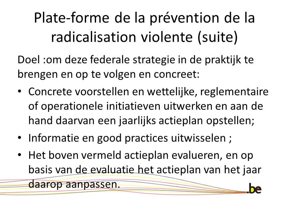Plate-forme de la prévention de la radicalisation violente (suite) Doel :om deze federale strategie in de praktijk te brengen en op te volgen en concr
