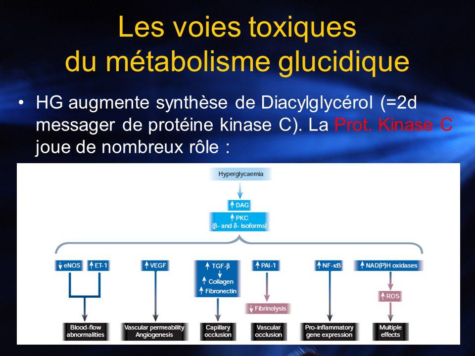 HG augmente synthèse de Diacylglycérol (=2d messager de protéine kinase C). La Prot. Kinase C joue de nombreux rôle : Les voies toxiques du métabolism