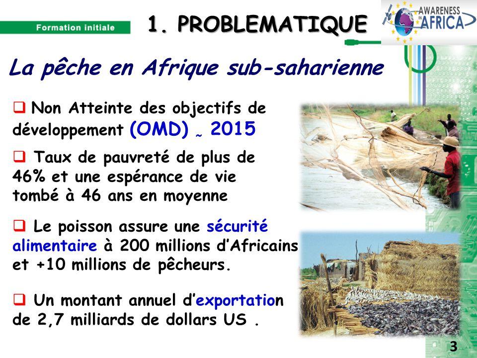 40 1. PROBLEMATIQUE 1. PROBLEMATIQUE  Non Atteinte des objectifs de développement (OMD) 2015 La pêche en Afrique sub-saharienne  Taux de pauvreté de