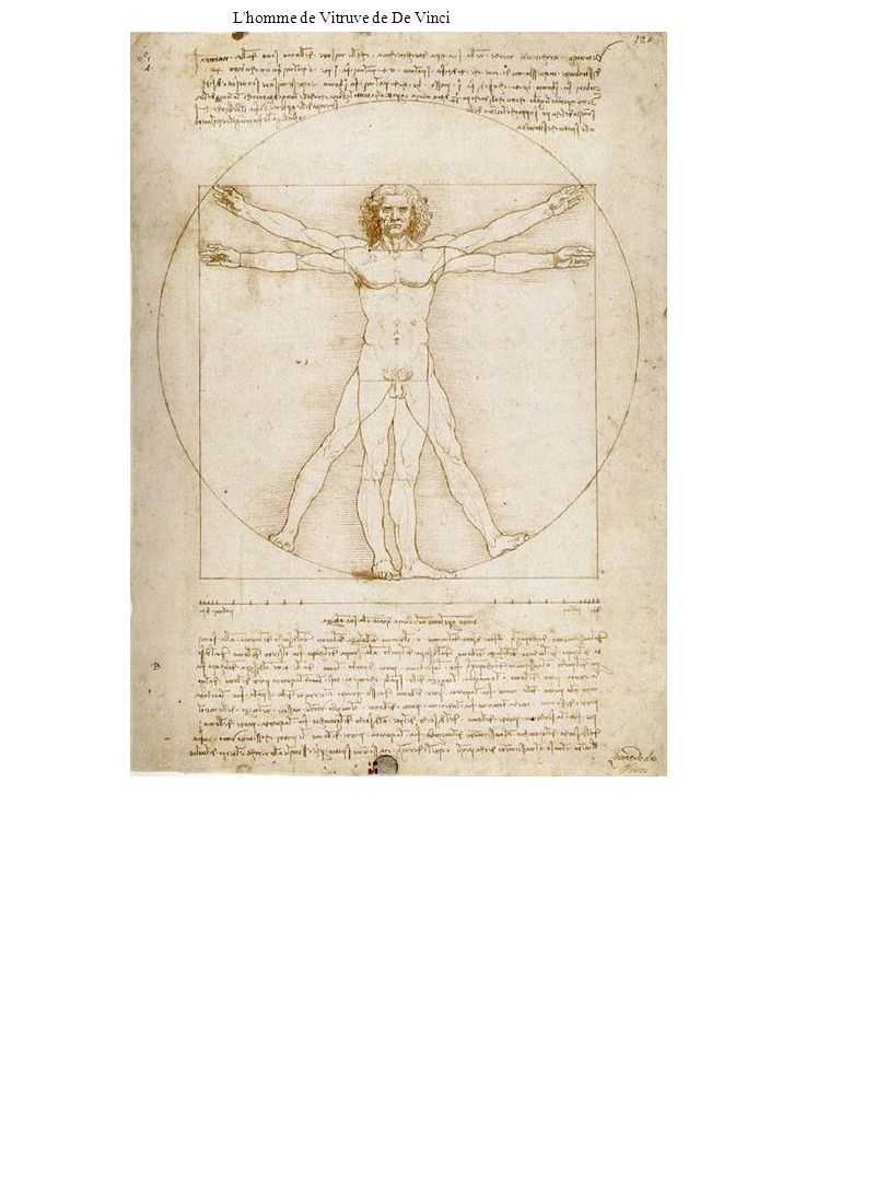 L'homme de Vitruve de De Vinci