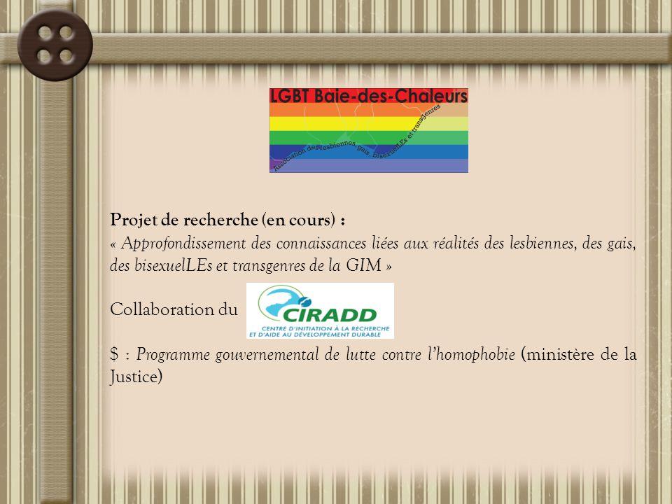 Soupers rencontres mensuels et activités sociales/membres Formation/membres :  « Pour une nouvelle vision de l'homosexualité »  « Une journée pour se raconter »  « Devenir intervenantEs du GRIS » Accréditation « Organisme communautaire » Participation à la consultation ministérielle sur la santé des HARSAH Campagnes radio de sensibilisation aux réalités LGBT
