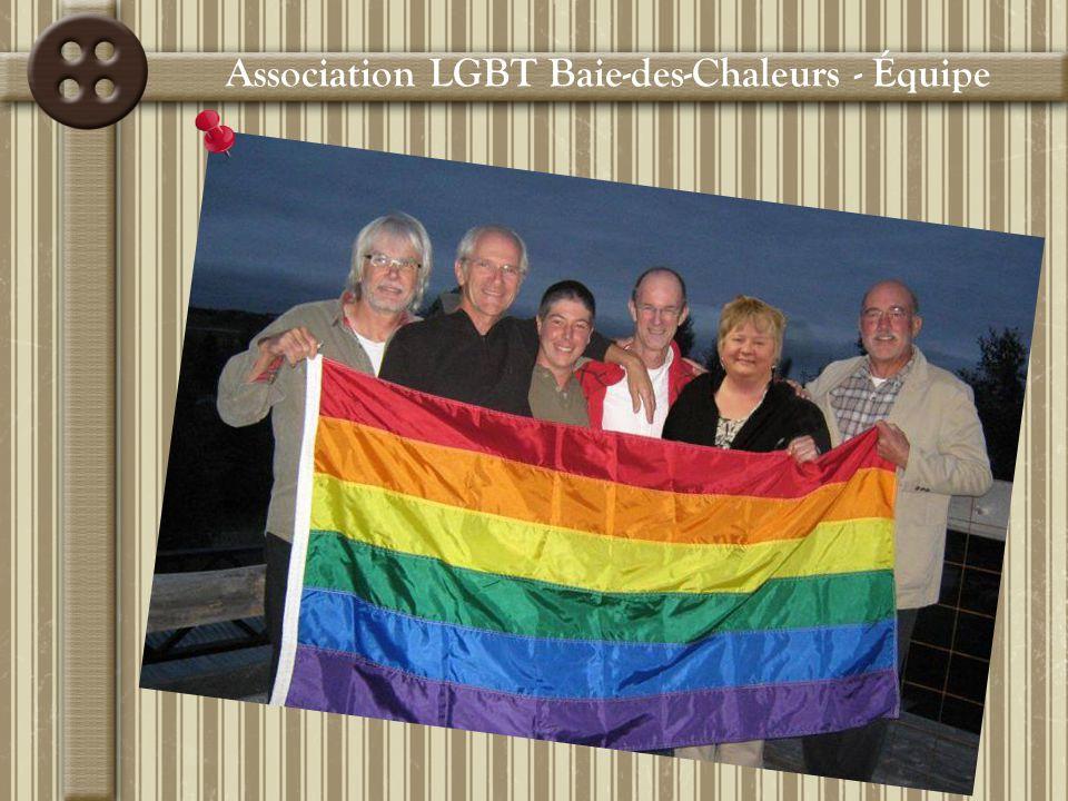 4 rencontres avec le Réseau des AlliéEs du Rocher-Percé Participation à la consultation ministérielle sur la santé des HARSAH Création du site « Rencontre LGBT Gaspésie » Démarche pour devenir un OBNL World café