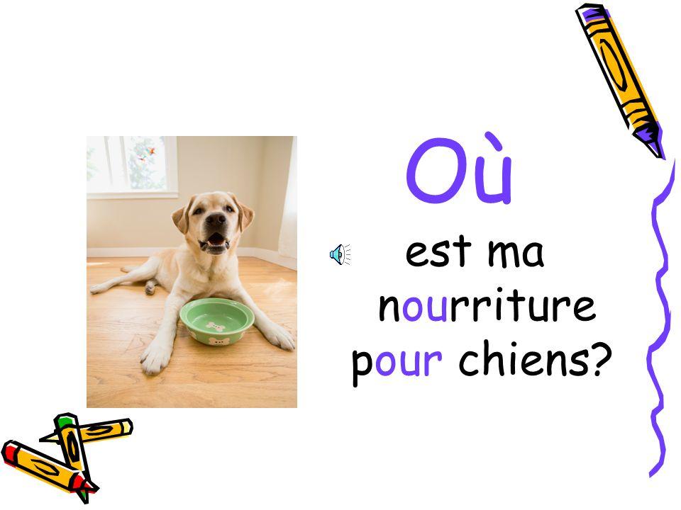 Où est ma nourriture pour chiens?