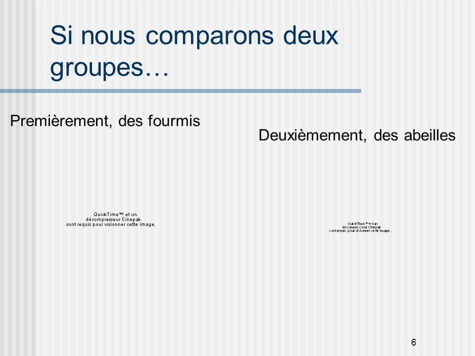 17 Première question: Les rôles et les fonctions - Enseignement: ex.