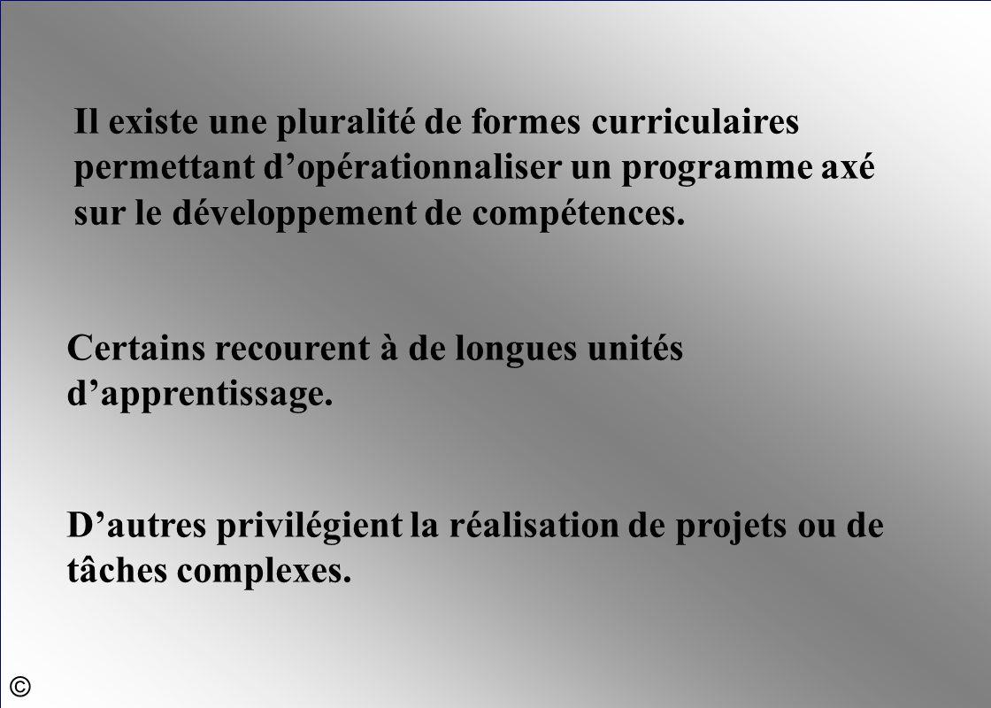 Il existe une pluralité de formes curriculaires permettant d'opérationnaliser un programme axé sur le développement de compétences. Certains recourent
