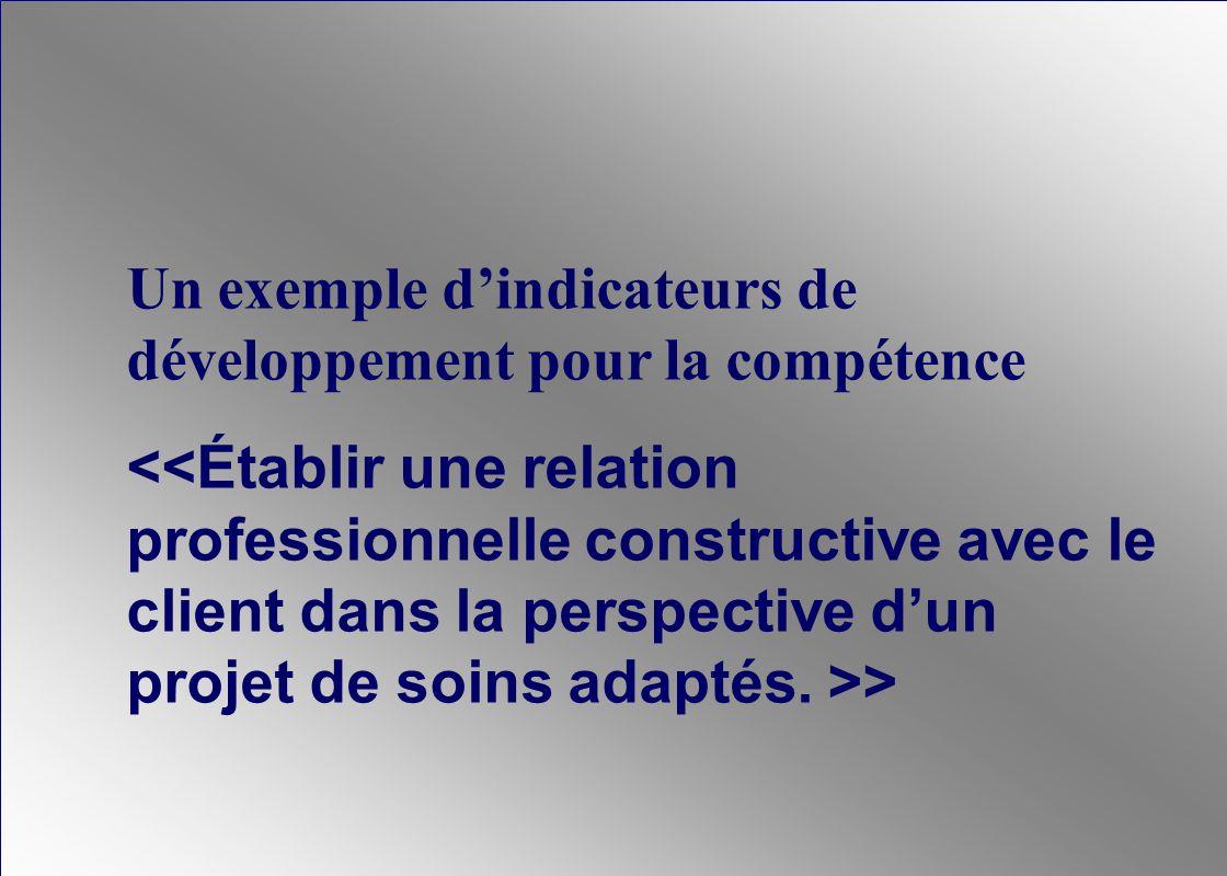 Un exemple d'indicateurs de développement pour la compétence > ©