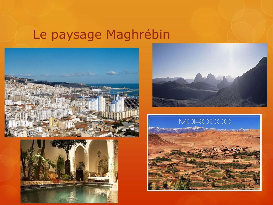 Le paysage Maghrébin