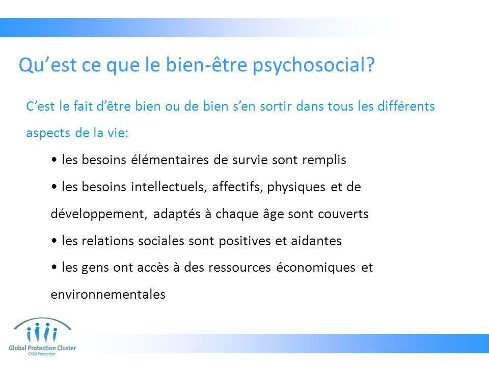 Qu'est ce que le bien-être psychosocial? C'est le fait d'être bien ou de bien s'en sortir dans tous les différents aspects de la vie: les besoins élém