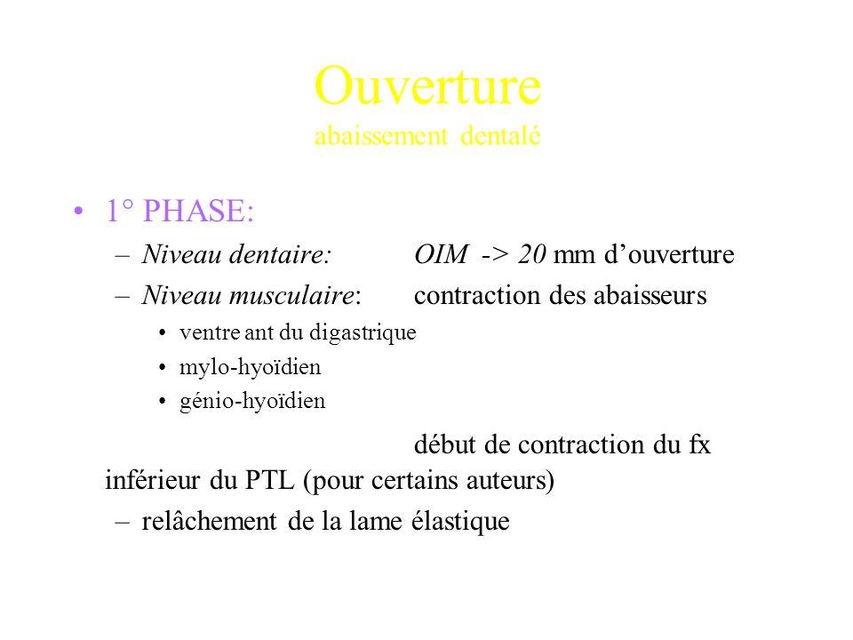 Ouverture abaissement dentalé 1° PHASE: –Niveau dentaire: OIM -> 20 mm d'ouverture –Niveau musculaire:contraction des abaisseurs ventre ant du digastr