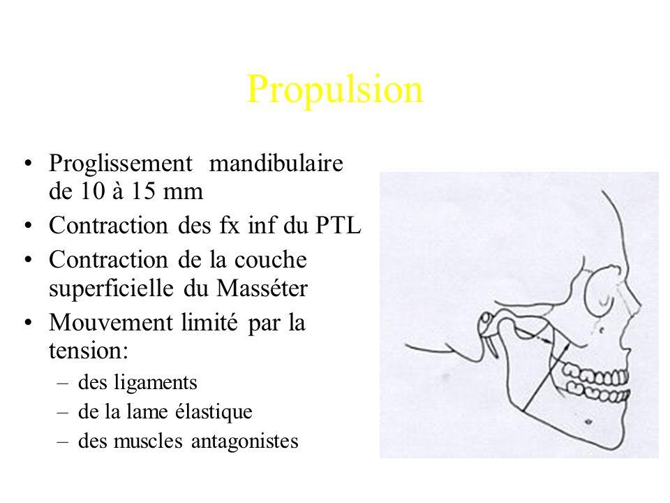 Propulsion Proglissement mandibulaire de 10 à 15 mm Contraction des fx inf du PTL Contraction de la couche superficielle du Masséter Mouvement limité