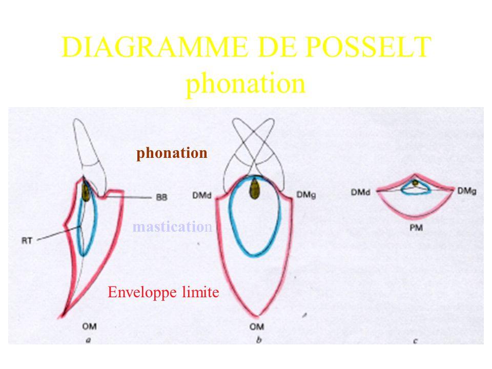 phonation mastication Enveloppe limite DIAGRAMME DE POSSELT phonation