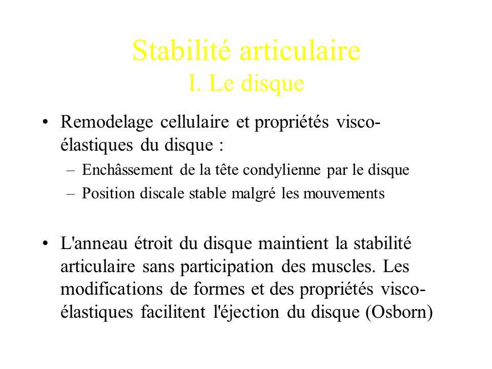 Stabilité articulaire I. Le disque Remodelage cellulaire et propriétés visco- élastiques du disque : –Enchâssement de la tête condylienne par le disqu