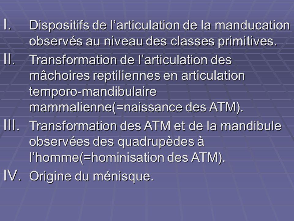 I. Dispositifs de l'articulation de la manducation observés au niveau des classes primitives. II. Transformation de l'articulation des mâchoires repti