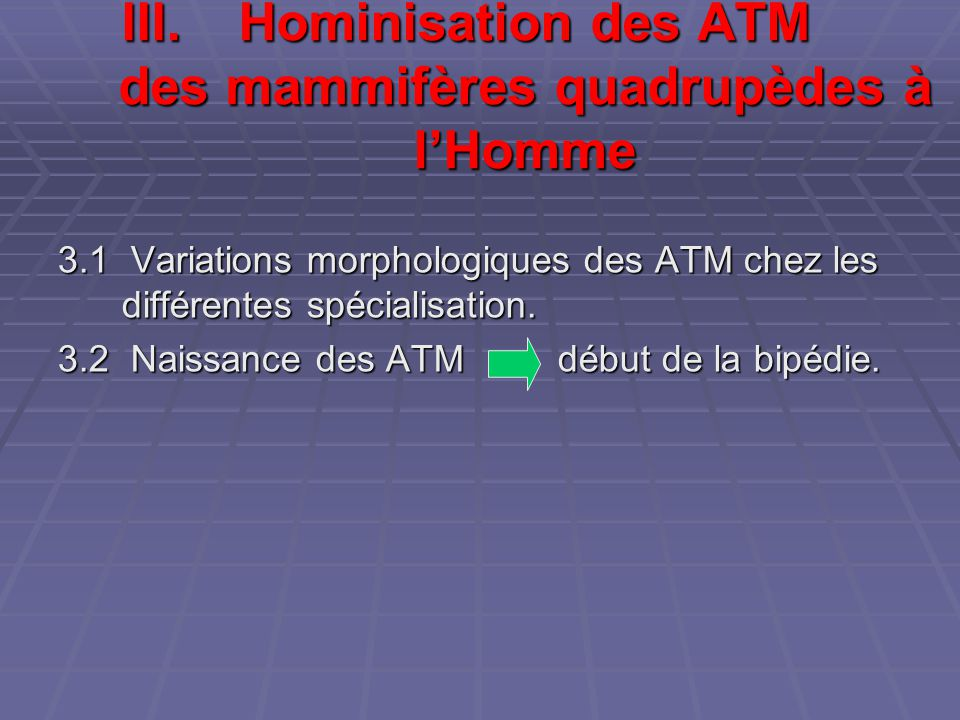 III.Hominisation des ATM des mammifères quadrupèdes à l'Homme 3.1 Variations morphologiques des ATM chez les différentes spécialisation. 3.2 Naissance