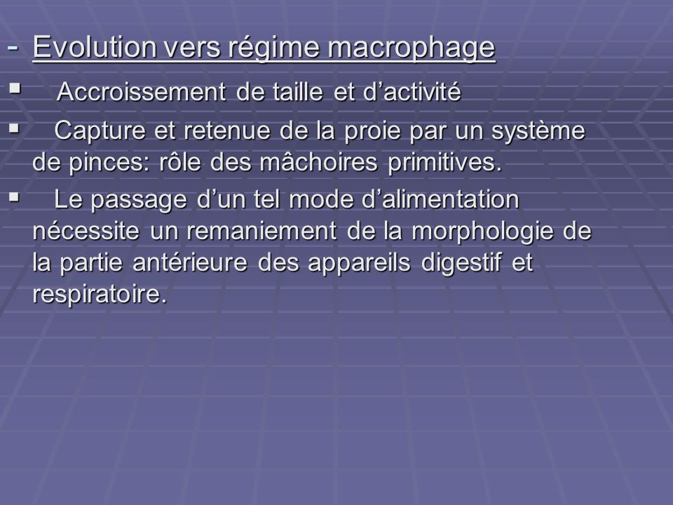 - Evolution vers régime macrophage  Accroissement de taille et d'activité  Capture et retenue de la proie par un système de pinces: rôle des mâchoir