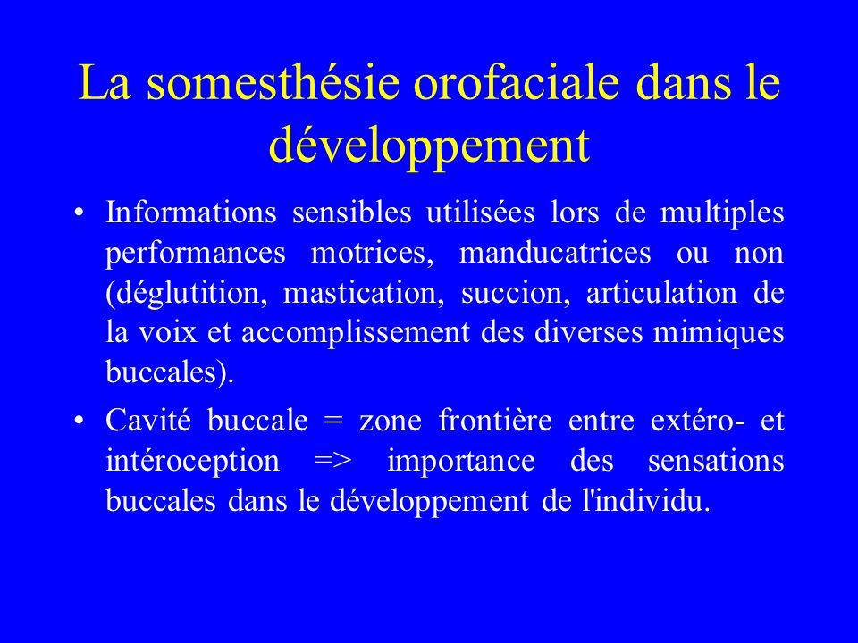 La somesthésie orofaciale dans le développement Informations sensibles utilisées lors de multiples performances motrices, manducatrices ou non (déglut
