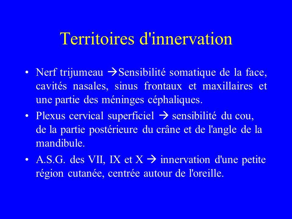 Territoires d'innervation Nerf trijumeau  Sensibilité somatique de la face, cavités nasales, sinus frontaux et maxillaires et une partie des méninges