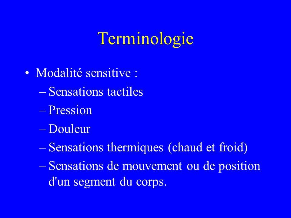 Terminologie Modalité sensitive : –Sensations tactiles –Pression –Douleur –Sensations thermiques (chaud et froid) –Sensations de mouvement ou de position d un segment du corps.