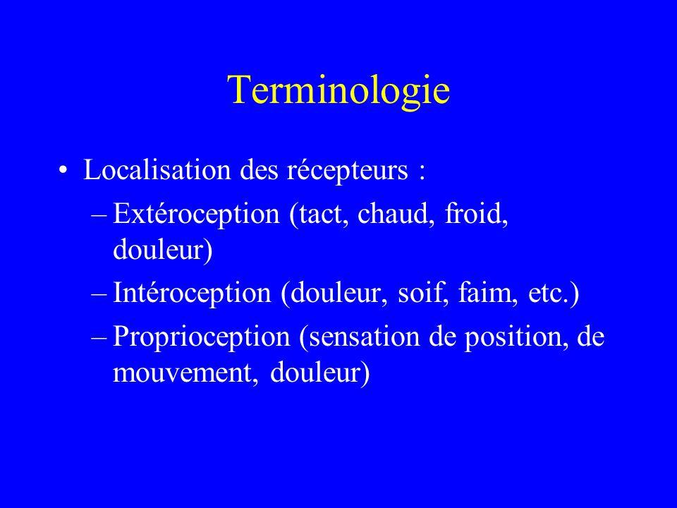 Terminologie Localisation des récepteurs : –Extéroception (tact, chaud, froid, douleur) –Intéroception (douleur, soif, faim, etc.) –Proprioception (se