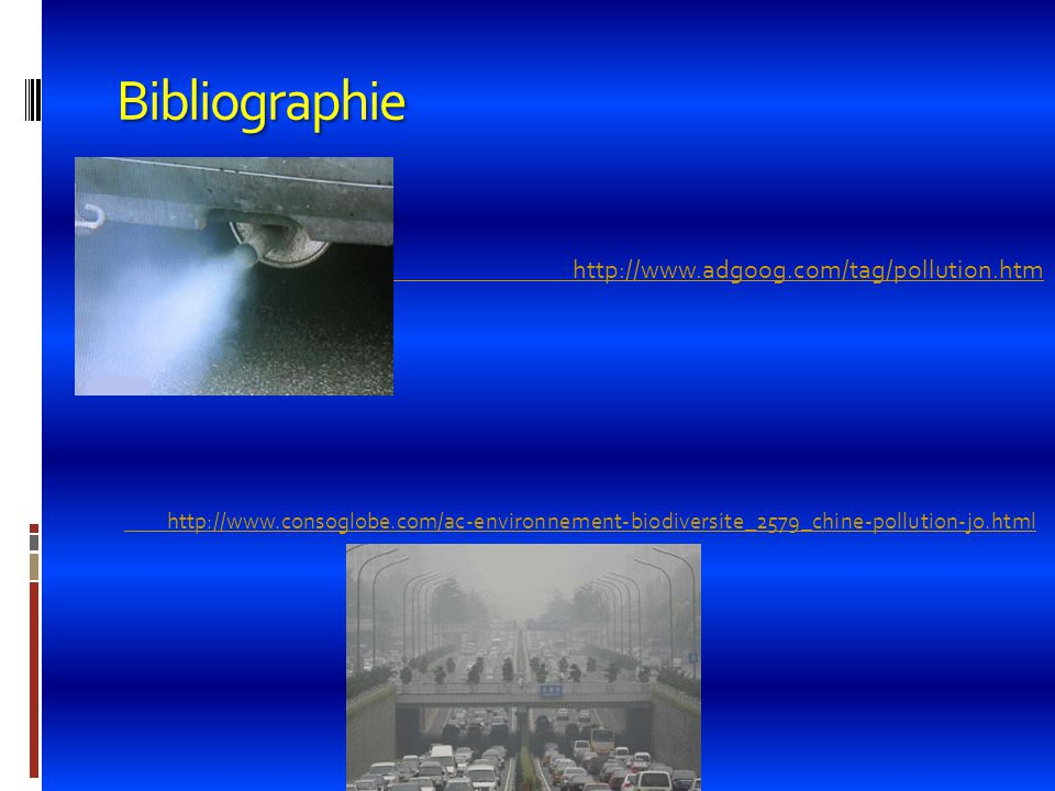 Bibliographie  http://www.adgoog.com/tag/pollution.htm http://www.adgoog.com/tag/pollution.htm http://www.consoglobe.com/ac-environnement-biodiversit