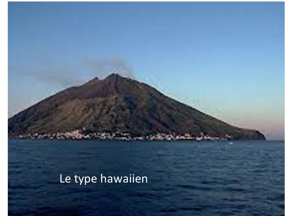 Le type hawaiien