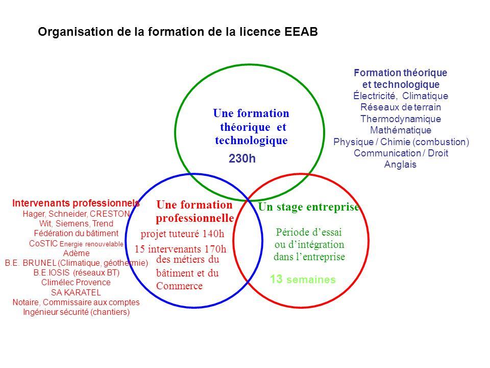 Organisation de la formation de la licence EEAB 230h Une formation théorique et technologique Une formation professionnelle projet tuteuré 140h 15 int