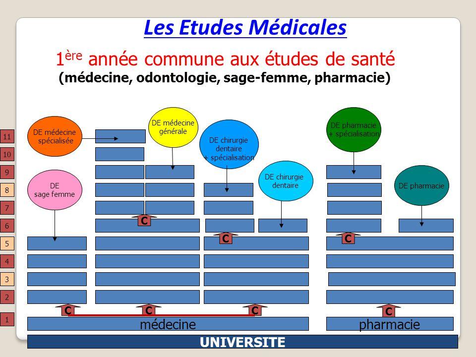 Les Etudes Médicales M.Kling CIO La-Celle-St-Cloud 200920 médecinepharmacie UNIVERSITE 4 DE chirurgie dentaire + spécialisation DE chirurgie dentaire