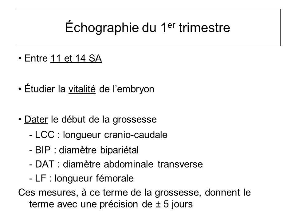 Entre 11 et 14 SA Étudier la vitalité de l'embryon Dater le début de la grossesse - LCC : longueur cranio-caudale - BIP : diamètre bipariétal - DAT :