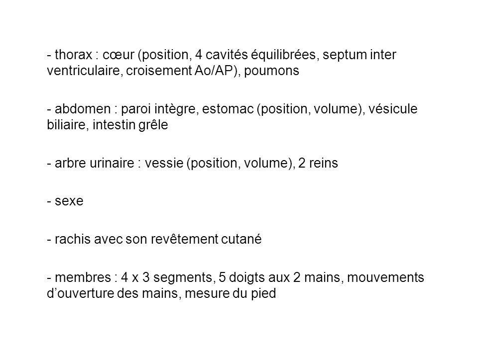 - thorax : cœur (position, 4 cavités équilibrées, septum inter ventriculaire, croisement Ao/AP), poumons - abdomen : paroi intègre, estomac (position,