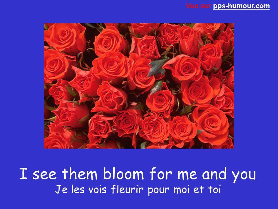 I see them bloom for me and you Je les vois fleurir pour moi et toi Vue sur pps-humour.compps-humour.com