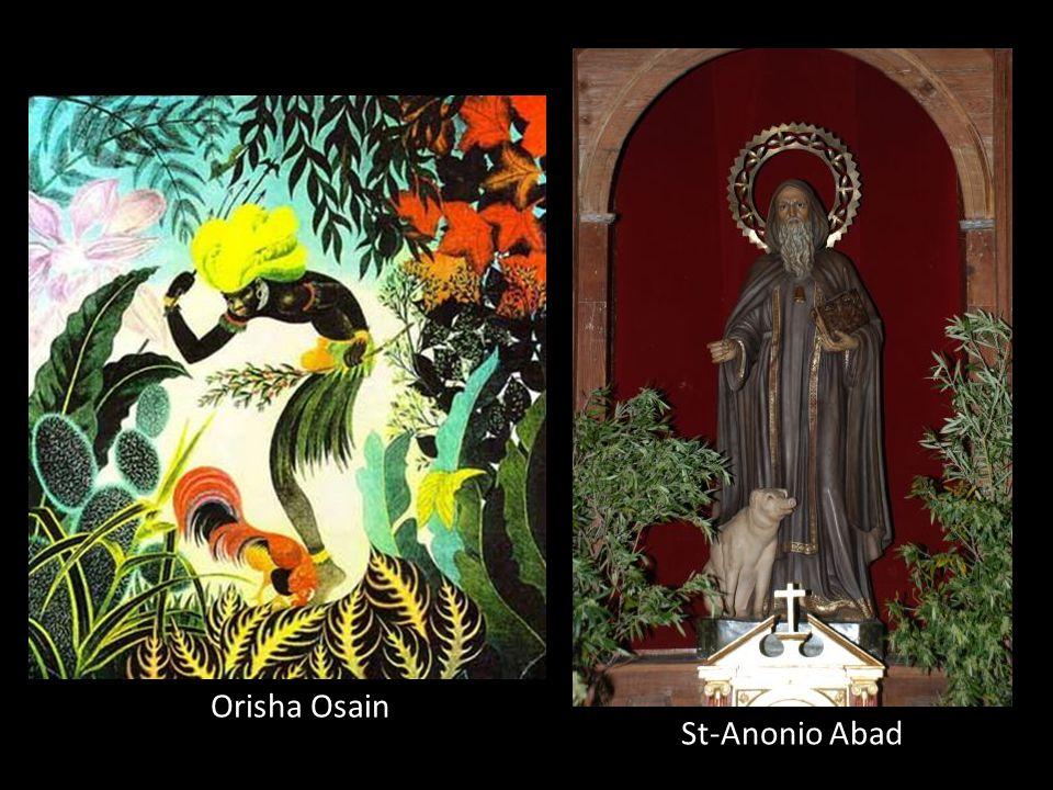 Orisha Osain Dieu de: La nature et le Dieu pharmaceutique par les plantes. Couleur: Vert Fête: 7 janv. Saint équivalenrt: Saint-Antonio Abad.