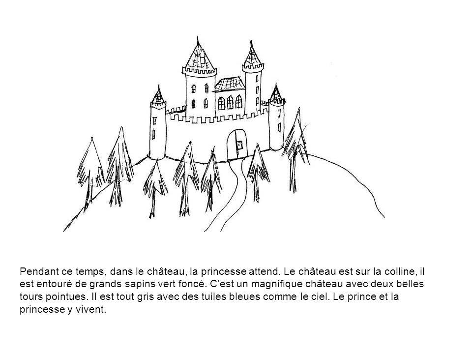Pendant ce temps, dans le château, la princesse attend. Le château est sur la colline, il est entouré de grands sapins vert foncé. C'est un magnifique