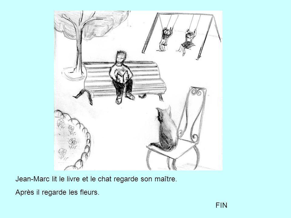Jean-Marc lit le livre et le chat regarde son maître. Après il regarde les fleurs. FIN