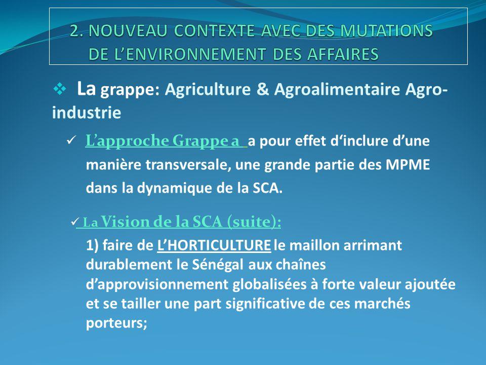  La grappe: Agriculture & Agroalimentaire Agro- industrie Vision de la SCA (suite): 2) faire de la sous-grappe «PRODUITS TRANSFORMÉS» le tremplin de l'entreprenariat sénégalais avec une diversité de niches porteuses pour former un tissu de PME à l'échelle nationale, pilier d'un nouveau secteur agricole moderne et rémunérateur; 3) élever rapidement le Sénégal au rang de l'autosuffisance alimentaire tout en amorçant un virage vers la compétitivité pour capitaliser les acquis du sous-secteur agro-industriel et assurer une croissance soutenue dans le moyen et le long terme.