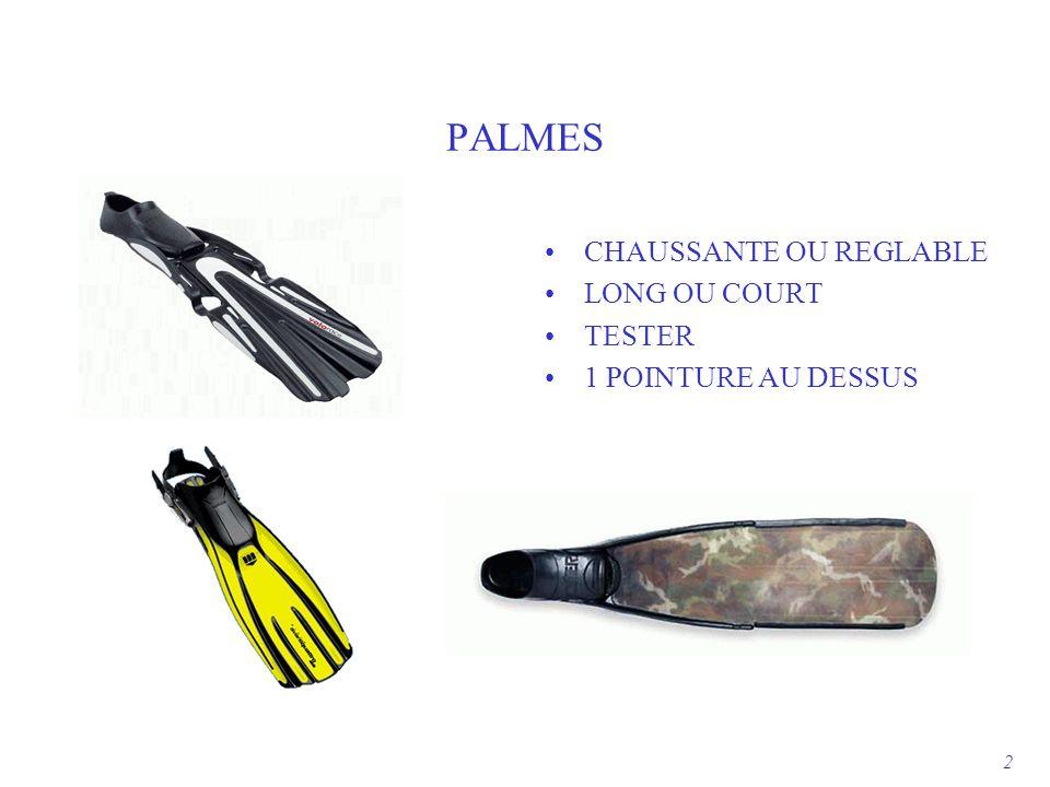 PALMES CHAUSSANTE OU REGLABLE LONG OU COURT TESTER 1 POINTURE AU DESSUS 2