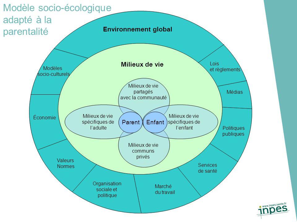 Environnement global Milieux de vie communs privés Milieux de vie partagés avec la communauté Milieux de vie spécifiques de l'adulte Milieux de vie sp