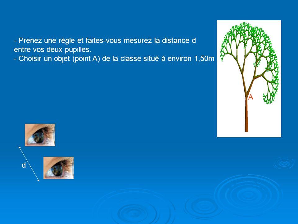 A L - Placer horizontalement une règle graduée à une distance L=40cm devant vos yeux en direction du point A.