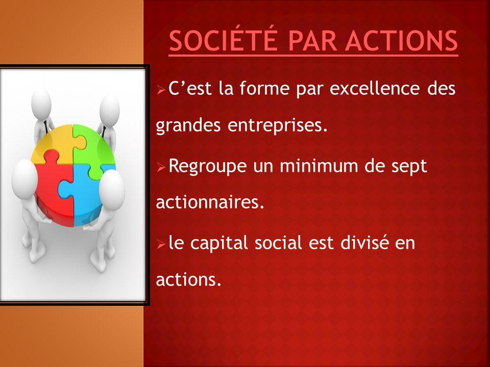 C'est la forme par excellence des grandes entreprises.  Regroupe un minimum de sept actionnaires.  le capital social est divisé en actions.