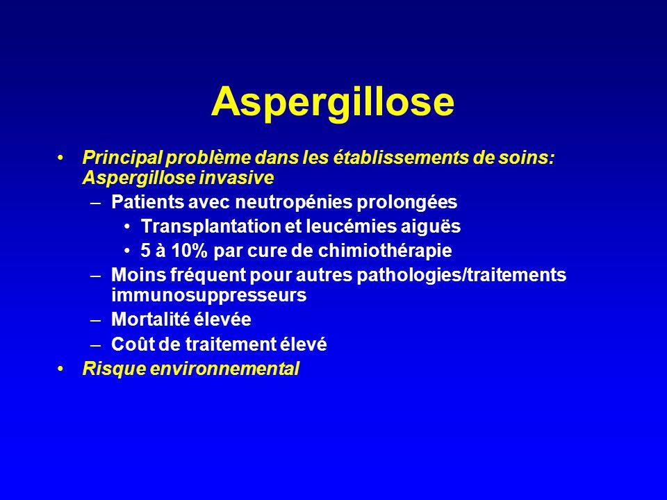 Aspergillose Principal problème dans les établissements de soins: Aspergillose invasive –Patients avec neutropénies prolongées Transplantation et leuc