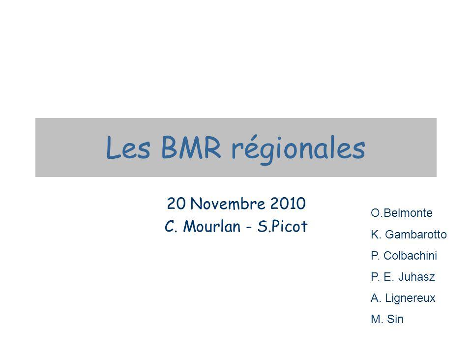 Les BMR régionales 20 Novembre 2010 C. Mourlan - S.Picot O.Belmonte K. Gambarotto P. Colbachini P. E. Juhasz A. Lignereux M. Sin