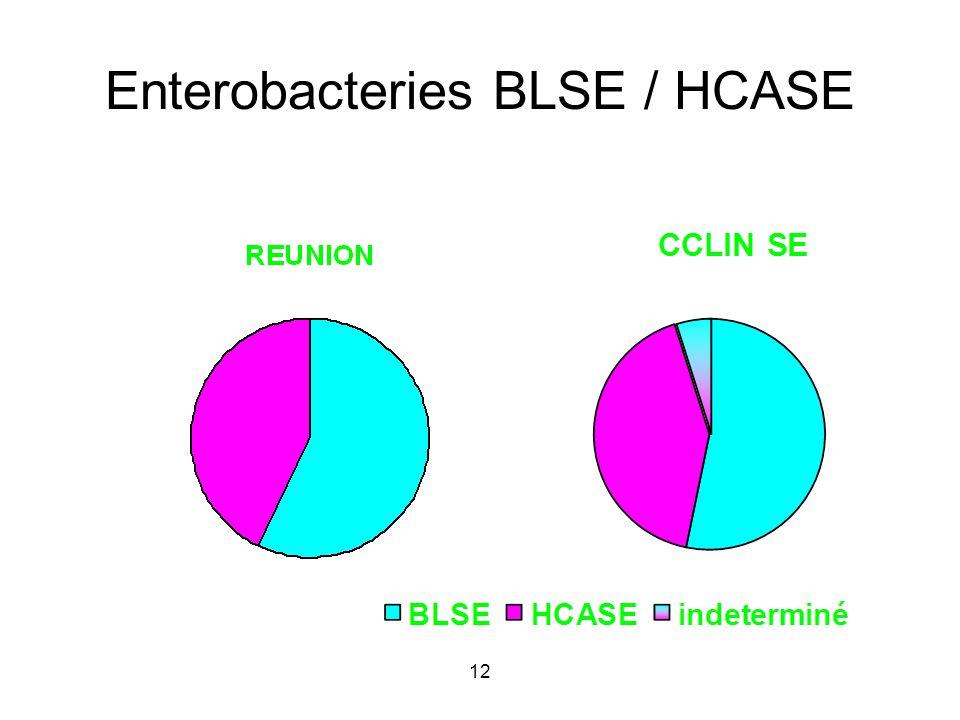 12 Enterobacteries BLSE / HCASE