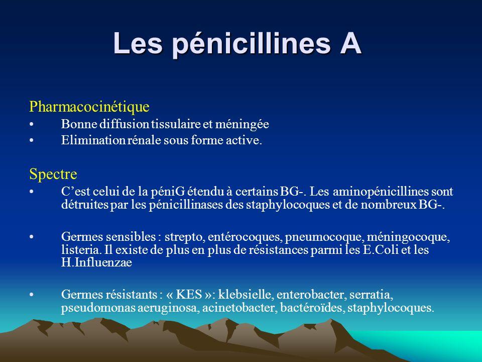 Les pénicillines A Les pénicillines A Pharmacocinétique Bonne diffusion tissulaire et méningée Elimination rénale sous forme active. Spectre C'est cel