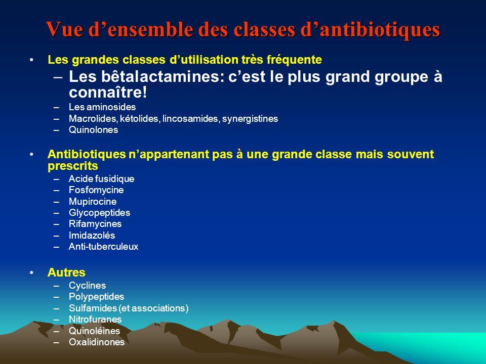 Vue d'ensemble des classes d'antibiotiques Les grandes classes d'utilisation très fréquente –Les bêtalactamines: c'est le plus grand groupe à connaîtr