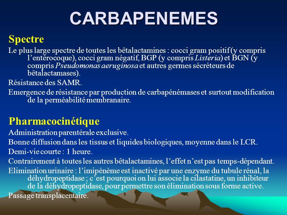 CARBAPENEMES Spectre Le plus large spectre de toutes les bêtalactamines : cocci gram positif (y compris l'entérocoque), cocci gram négatif, BGP (y com